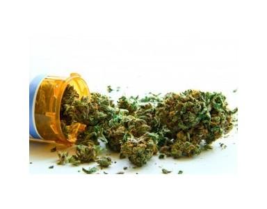 Efectos del CBD y el THC